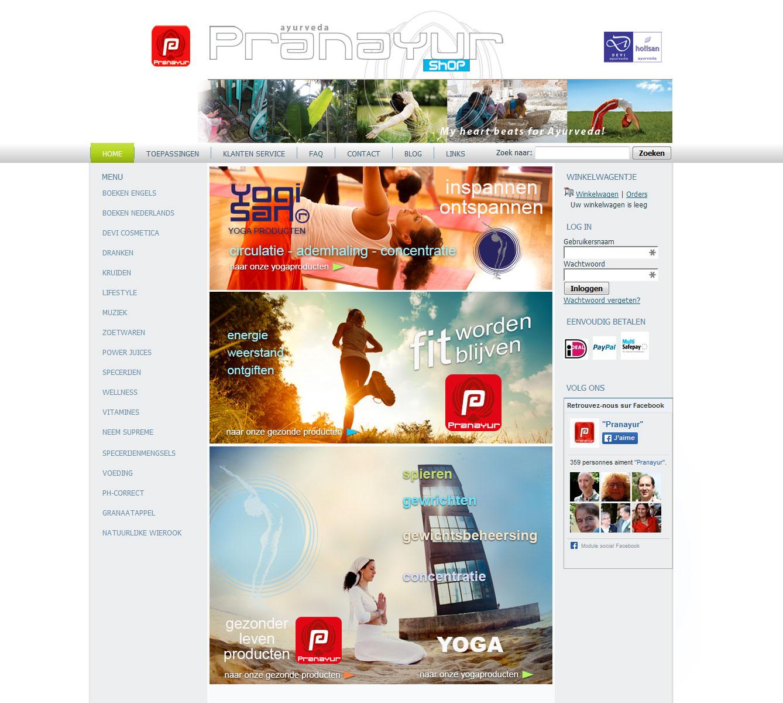 pranayur logo site design jules dorval