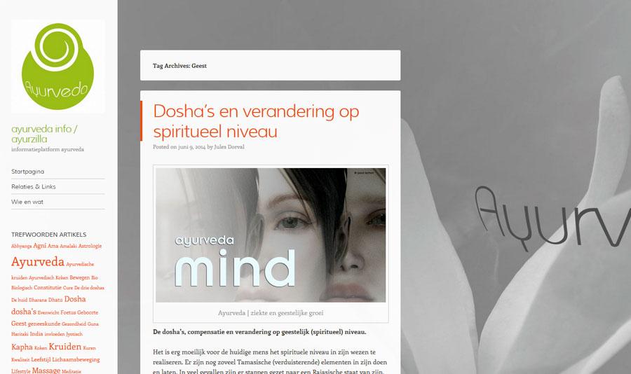 blog exemple ayuveda info design jules dorval