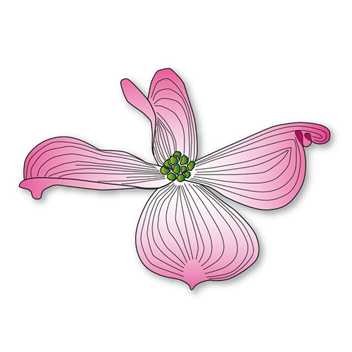 illustration cornus logo design jules dorval